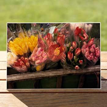 97241-Flower-Cart