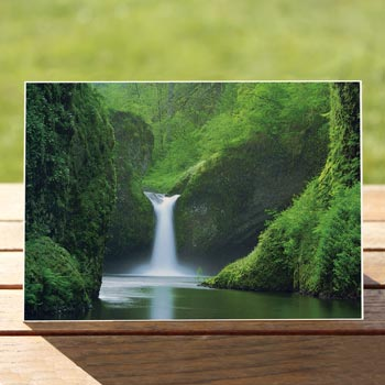 Punchbowl Falls Red Oak Greeting Cards Wisconsins Greeting Card