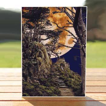 97461-moon-point-lobos-card
