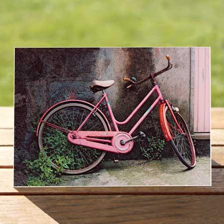 97476-pink-bike