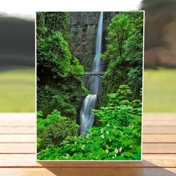 97495-multnomah-falls-birthdaycards