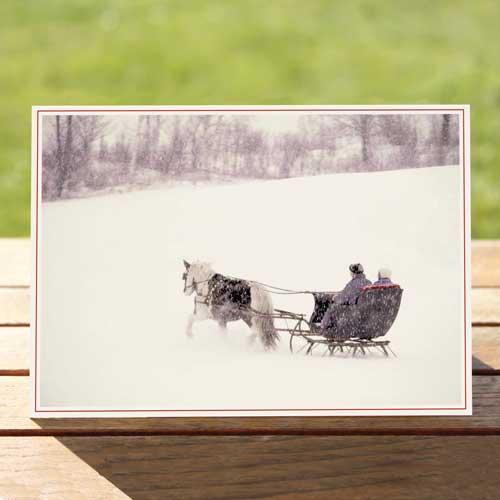 97445H-sleigh-ride