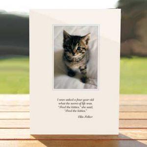 97305-bob-kitty-card