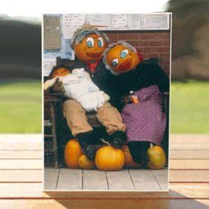 97531-pumpkin-people-card