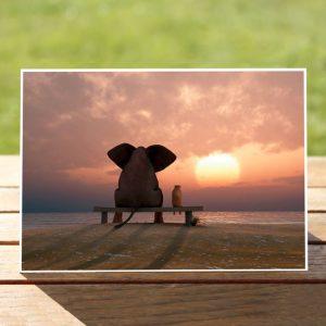 97632-ElephantandHisFriend-GreetingCard